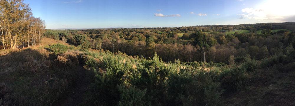 Woodland and heathland